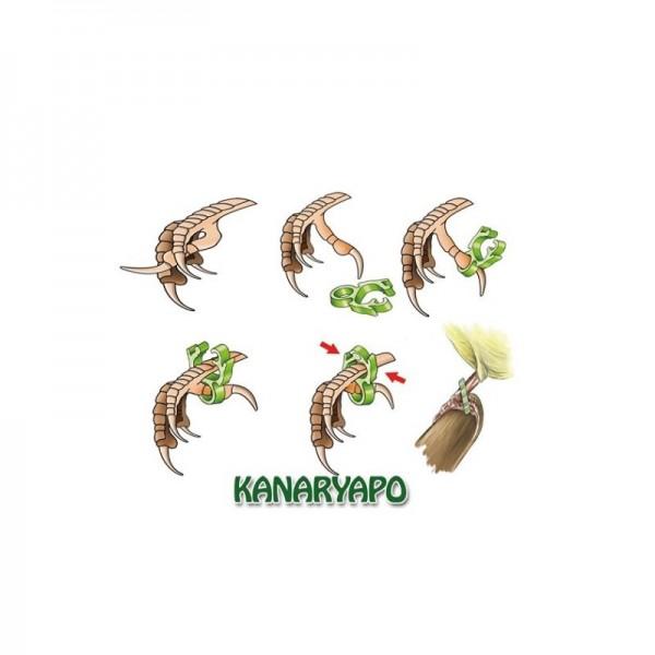 Anilla Correctora Patel Kanaryapo