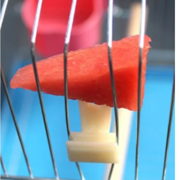 Soporte para fruta de plastico