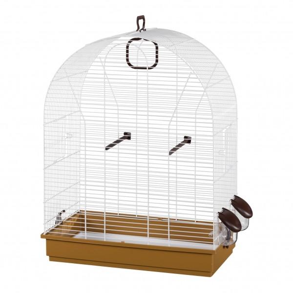 Cage Birds 623