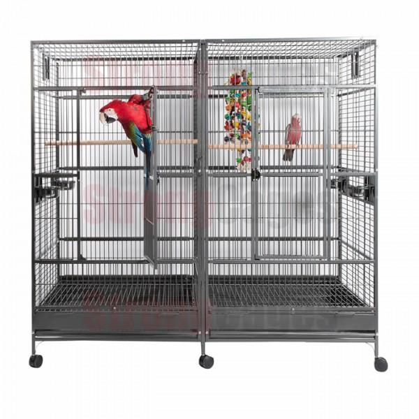 Twin Macaw