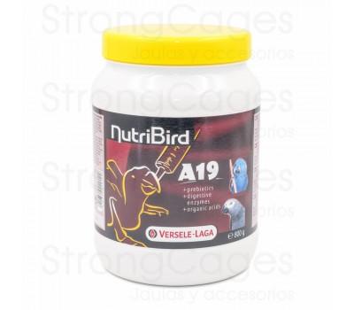 Nutribird A19