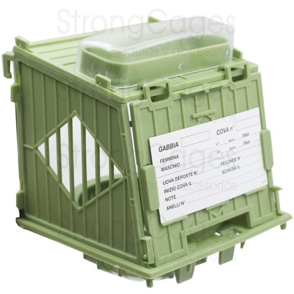 Green external nest with egg holder