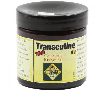 Transcutine | Clean Paws