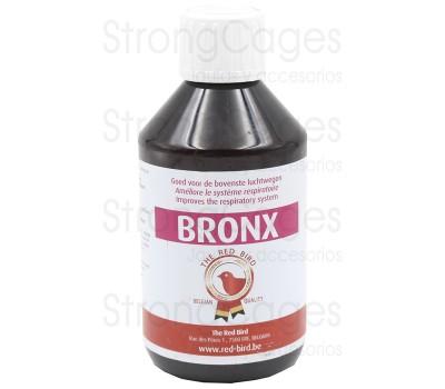 Bronx (vias respiratorias)