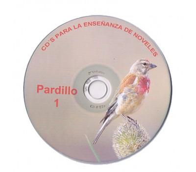 Pardillo 1