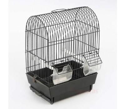 Cage Carina Exhibition