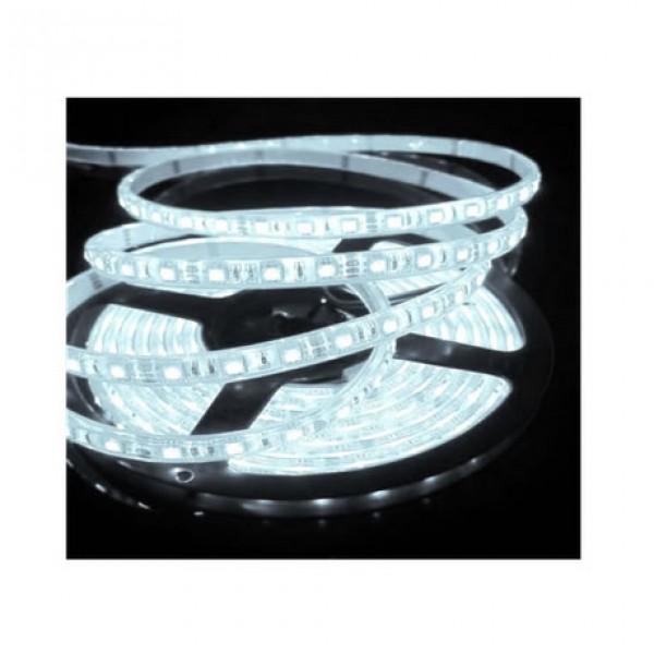 LED strip 1 meter plug